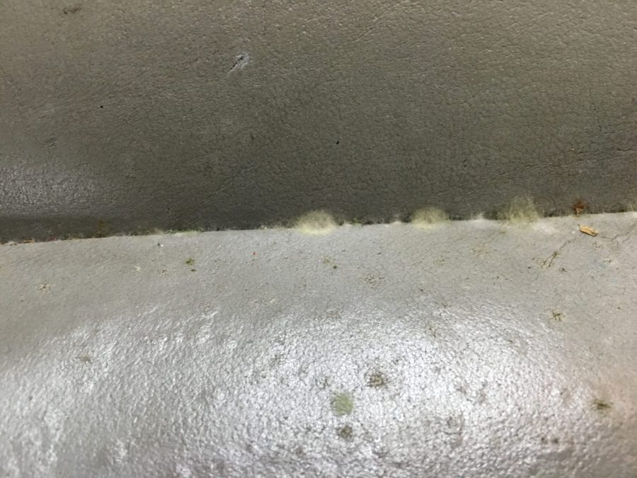 Mold inside a vehicle