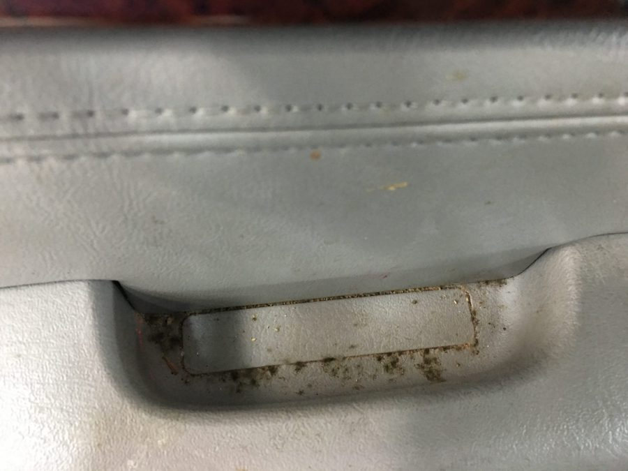 Mold inside of a car
